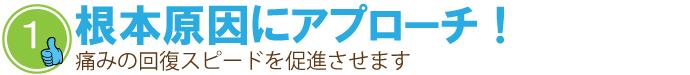 seitai_tokutyo1