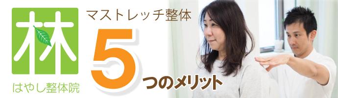 top_5merit
