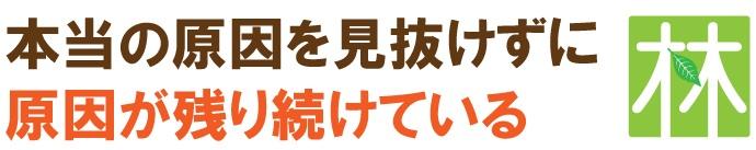 kyousaku_midashi2
